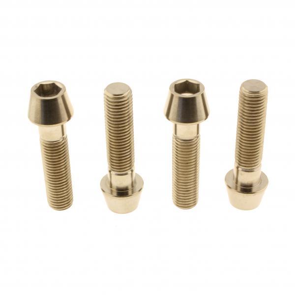 Titan-Bremssattelschrauben Set M10 x 1,25 x 40mm